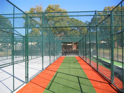 This is a green coated cricket enclosure with gate on the lateral face.