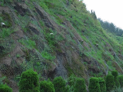 Chain Link Wire Mesh For Landscaping Slopes