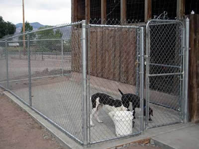Chain Link Fence Panel for Pet Cage
